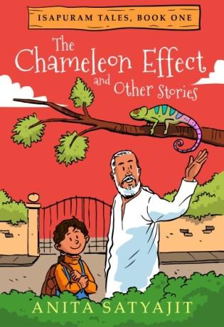 Chameleon effect cover